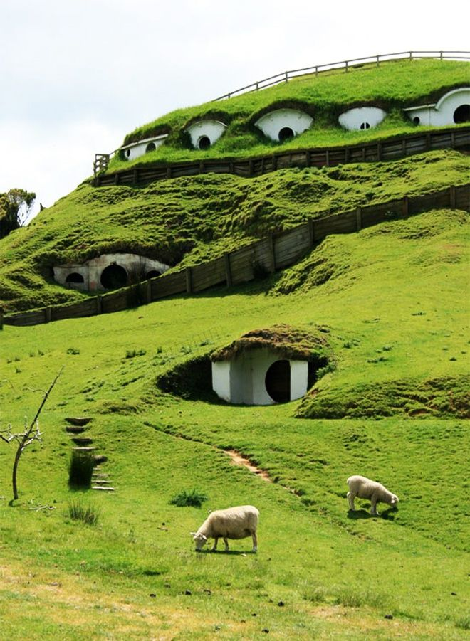 """Abandoned Hobbiton from """"Lord Of The Rings"""" taken over by sheep"""