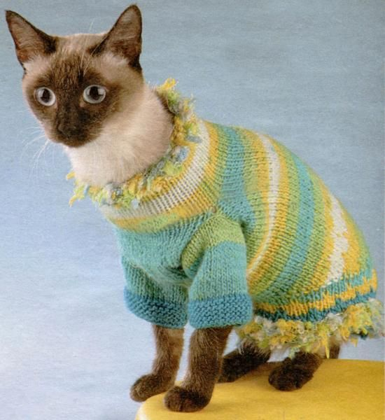cats in hats 30 knit and crochet pdf