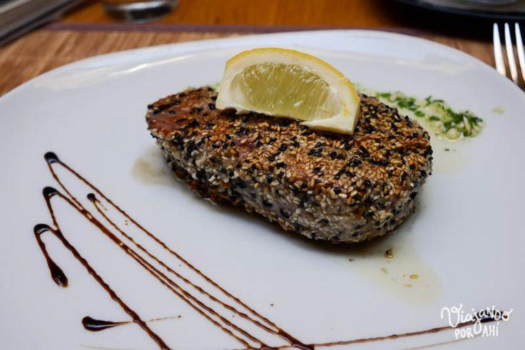 gastronomia-serbia-croacia-74