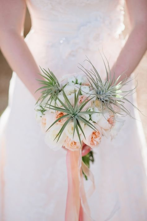 Garden roses, air-plants, and ivory ranunculus // Bouquet: Butterfly Petals //  Photographer: Justin and Keary Weddings // http://www.theknot.com/submit-your-wedding/photo/775ec9ae-2b75-4683-b363-e7c1f0bda6ca/Ryan-and-Angelas-AZ-Wedding