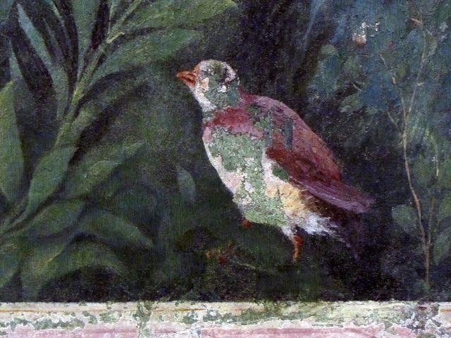 Painted Garden Villa Of Livia Detail With Standing Bird