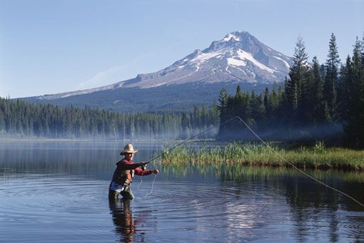Google Image Result for http://www.montana.ms/Images/FISHING.JPGGone Fish, Country Roads, Favorite Places, Dreams, Montana, Christian Quotes, Fisher Of Men, Buckets Lists Fish In Alaska, Fly Fishing
