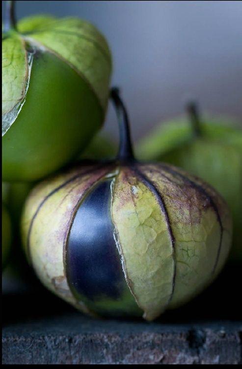 Tomatillos © Lynn Karlin