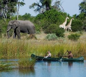 Savuti Camp is situated about 17 km downstream from the Zibadianja Lagoon, the source of the Savute Channel. For years the Channel was dry but in 2008 the waters returned and now the Camp has front-row seats to an abundance of wildlife.  #Safari #Africa #Botswana #WildernessSafaris