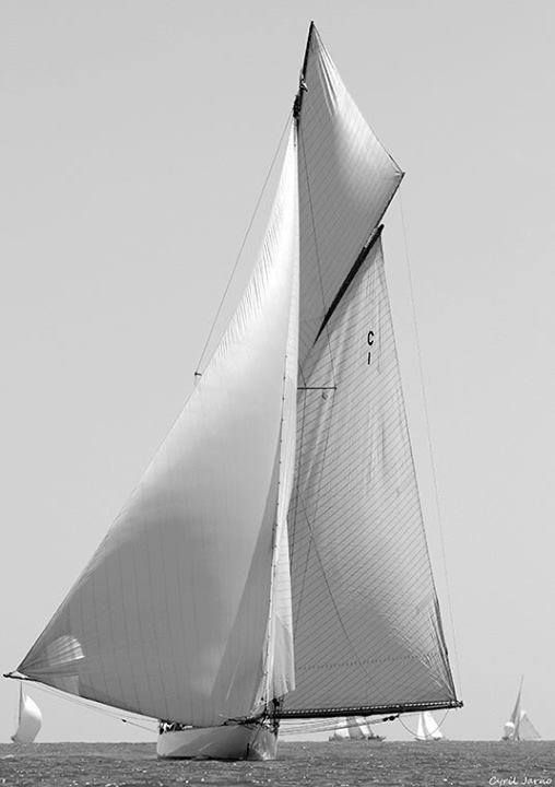 """Wing and wing sailing - a beautiful """"home on the  road"""""""