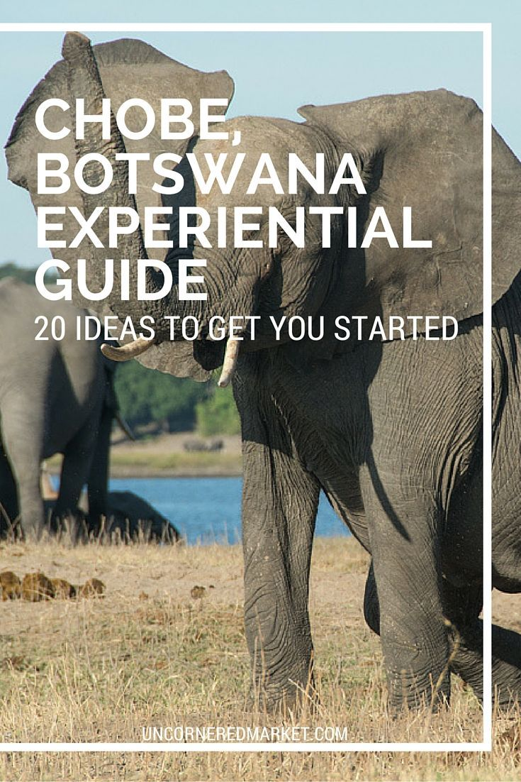 There's more to Chobe National Park and Chobe, Botswana than a traditional safari experience. Here are 20 experiences ideas for your Chobe travel itinerary that enable you to learn more about the culture and history.: