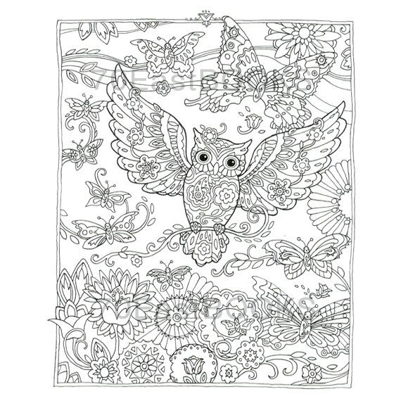 Creative Haven Owls Coloring Book By Marjorie by 70EastBOOKS