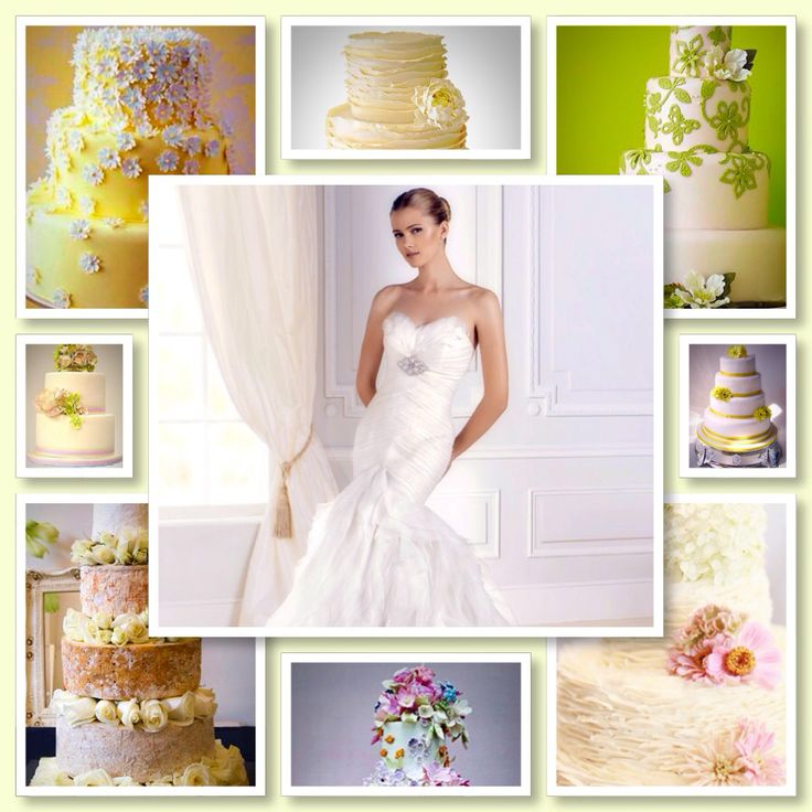 WEDDING CAKE PROMOTION Dash Bakery & Venue Hire Wedding Cakes, Bridal Gowns, Bakery, Tea Garden,  Buy a Pronovias La Spoza Wedding Dress and Dash Bakery will bake your Wedding Cake for free. Promotion starts the 26th of January. Terms & Conditions will apply. The value of the Wedding Cake is R 4000-00 Contact Anne on : 011 979-0922 202 Monument rd, Glen Marais. Kempton Park