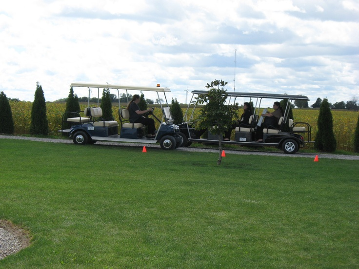 Golf carts escort the guests to and from The Park.