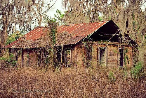 Old South, Marion County Fl