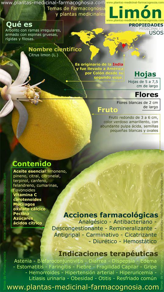 Propiedades del limón. usos medicinales  #Nutrición y #Salud YG > nutricionysaludyg.com