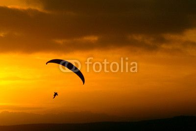Parapendio al tramonto - silhouette. #microstockphotographs #microstockphotowebsite #microstockphotography #microstockphotowebsites #marketingonline #microstock #marketing #webdesign #design #designaneolife #ecommerceur #fastudio #SEO #web2014 #job #csstemplates #css #html #html5 #html5css3 #Websites #socialmediamarketing #contentmarketing #marketingtips #digitalmarketing #socialmedia #onlinemarketing #socialmediatrips #smalbusiness #internetmarketing