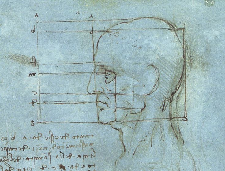 """""""The proportions of the head""""    By Leonardo da Vinci    Completion Date: c.1490    Place of Creation: Milan, Italy        Technique: metalpoint, ink    Material: paper"""