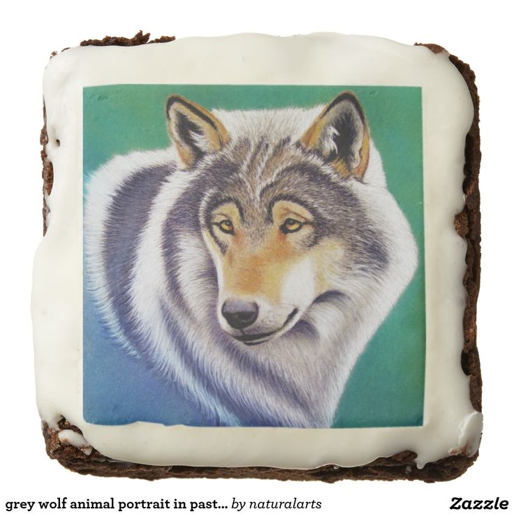 grey wolf animal portrait in pastel square brownie