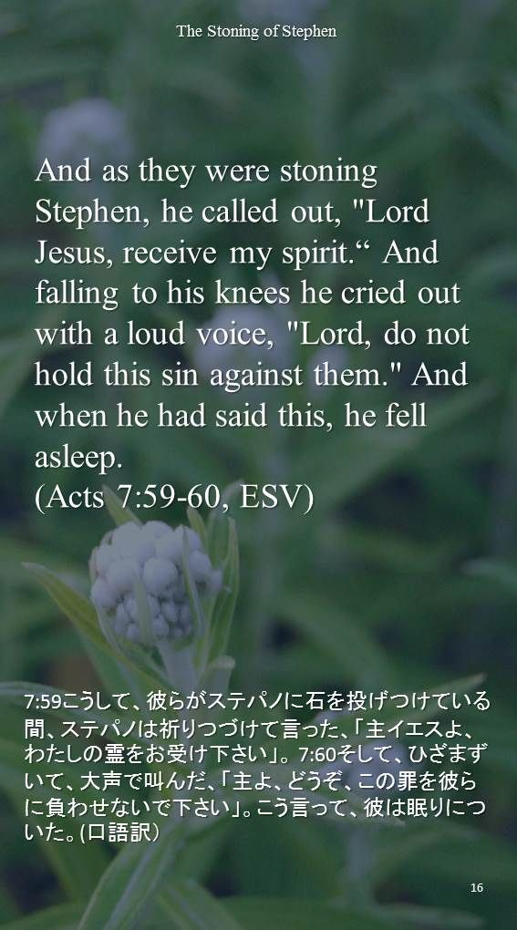 """And as they were stoning Stephen, he called out, """"Lord Jesus, receive my spirit."""" And falling to his knees he cried out with a loud voice, """"Lord, do not hold this sin against them."""" And when he had said this, he fell asleep.(Acts 7:59-60, ESV)7:59こうして、彼らがステパノに石を投げつけている間、ステパノは祈りつづけて言った、「主イエスよ、わたしの霊をお受け下さい」。 7:60そして、ひざまずいて、大声で叫んだ、「主よ、どうぞ、この罪を彼らに負わせないで下さい」。こう言って、彼は眠りについた。(口語訳)"""
