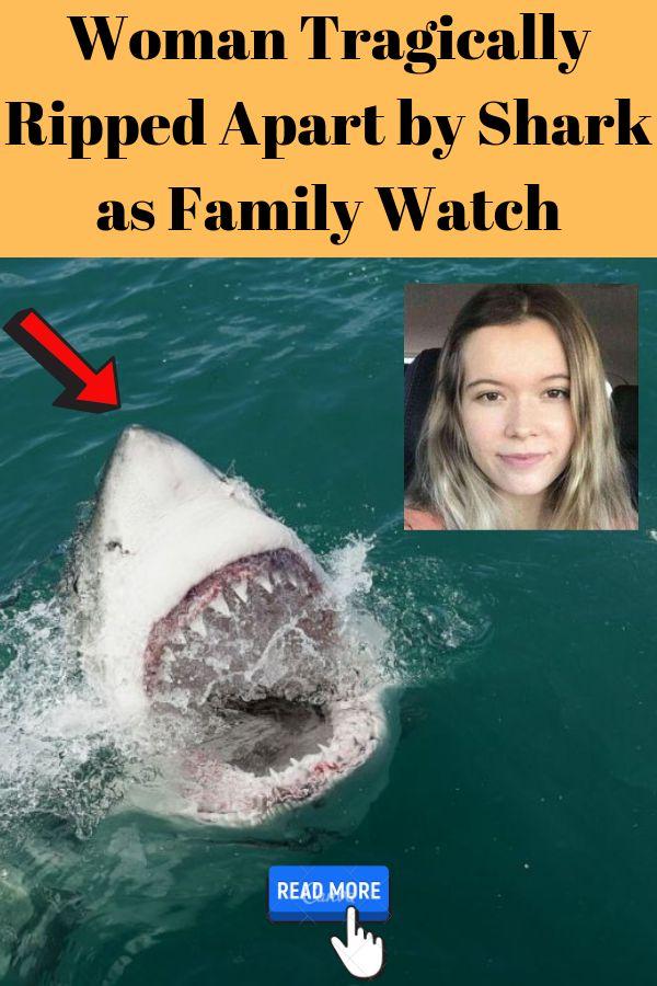 Frau von Hai als Familienuhr tragisch auseinandergerissen