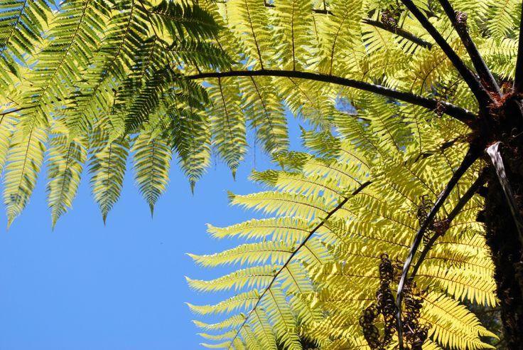 LazingBee Photography - Tumblr Images avaialble @ www.istockphotos.com/lazingbee