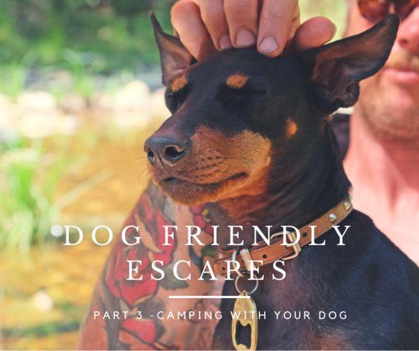 Dog friendly camping Victoria Australia