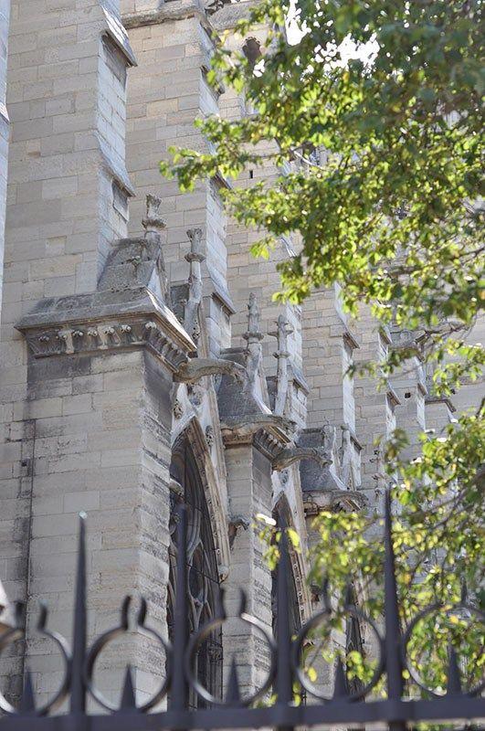 Gargoyles Notre Dame