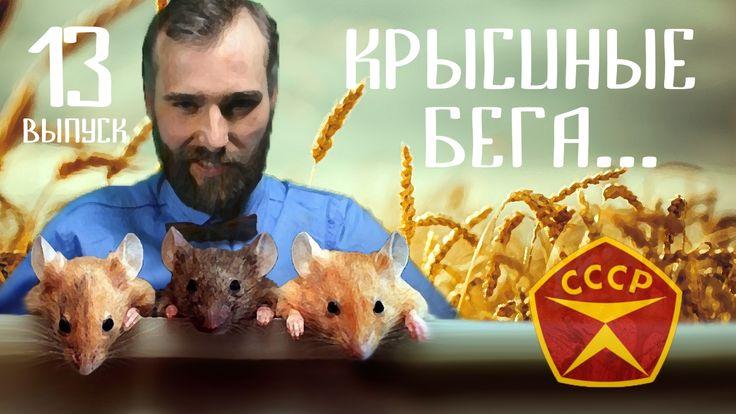 Эфир №13 Крысиные  бега