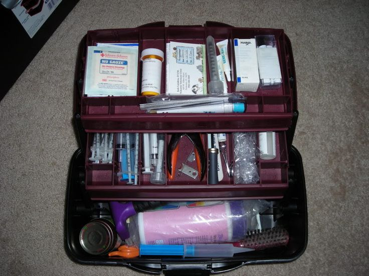 Rabbit first aid kit! I would definitely add baby simethicone drops (Mylicon)!!!