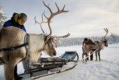 Hossa sneeuwwandelen | wintervakantie in Finland langs hutten