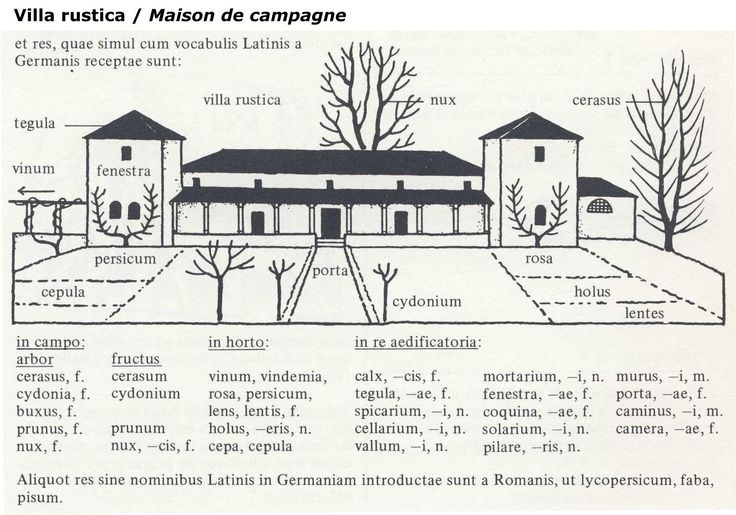jpg_La_maison_de_campagne_-_Villa_rustica