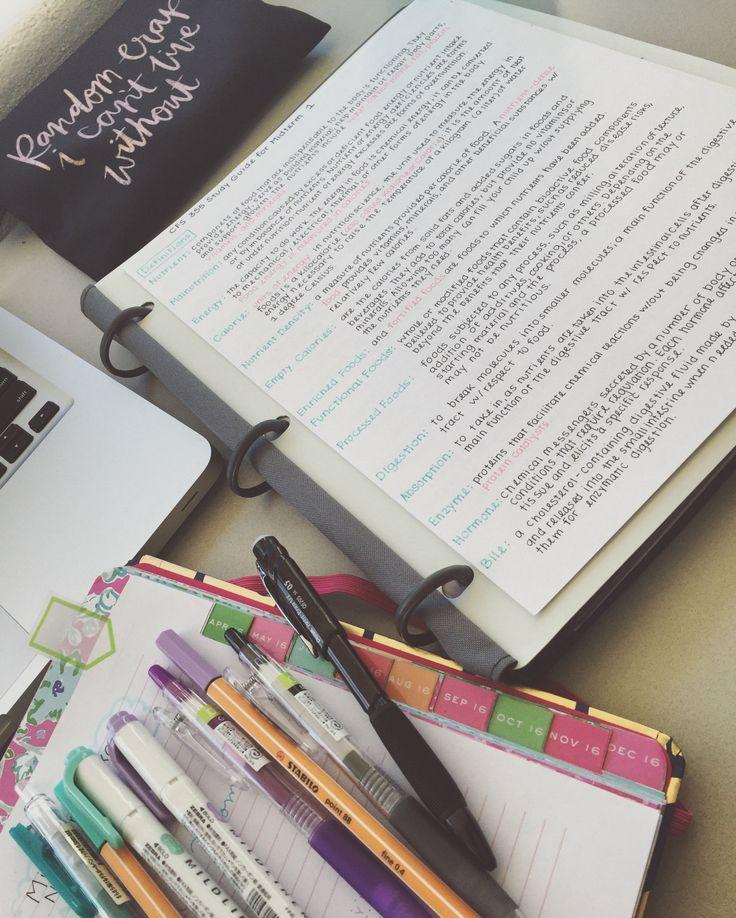 goals future essays