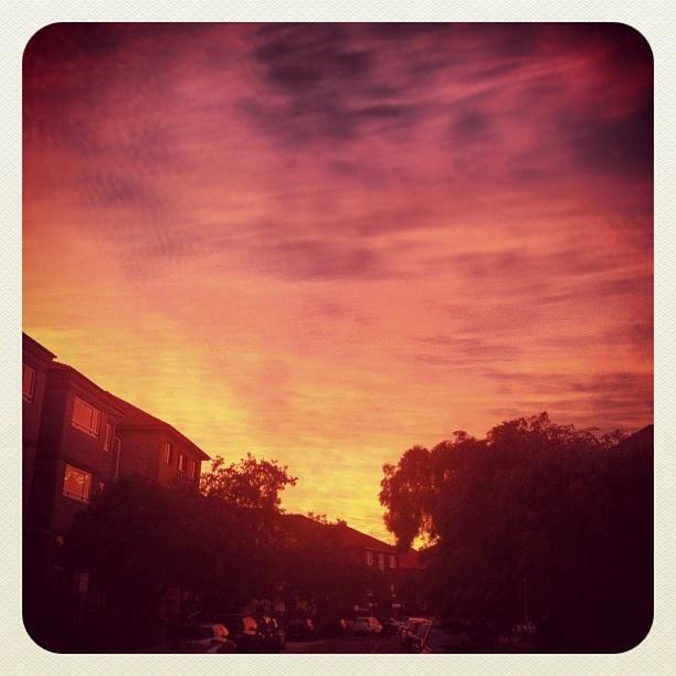 Stunning Start in Bondi #sunrise #bondi #atbondi #iphoneography #sydney