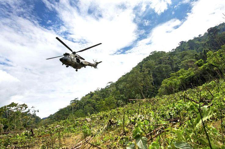 GRAVE DENUNCIA! Cartel de los soles transporta cocaína en aviones militares venezolanos (Video)