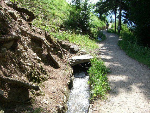 Waalweg in Schenna, Südtirol