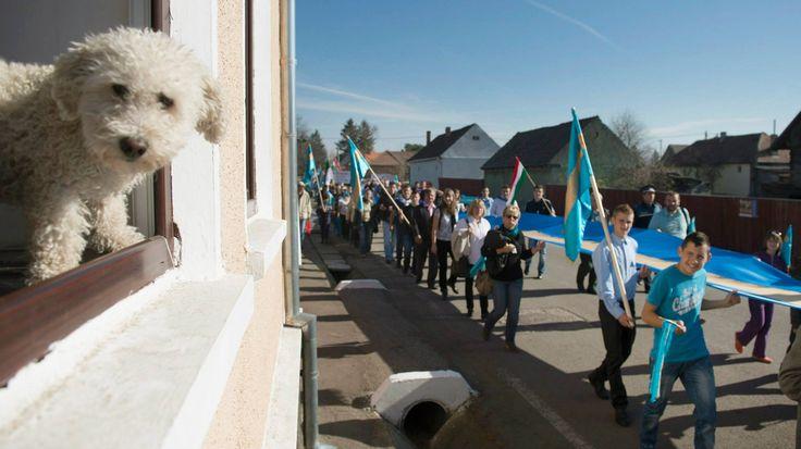 27.10.2013 Demonstration for the autonomy of Szeklerland.
