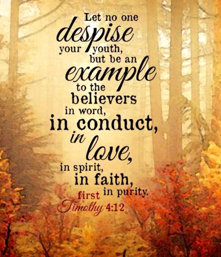 How To Quote A Bible Verse Example: 89 Best Images About 1 TIMOTHY On Pinterest