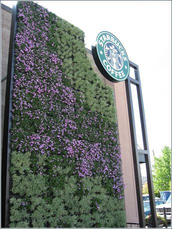 starbucks in seattle, wa gets a green wall. from g-sky [h/t aaron]