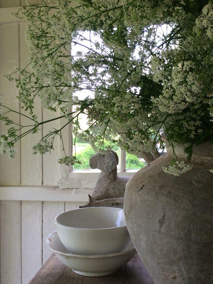 Oude kruik met fluitenkruid onder de veranda; summer!