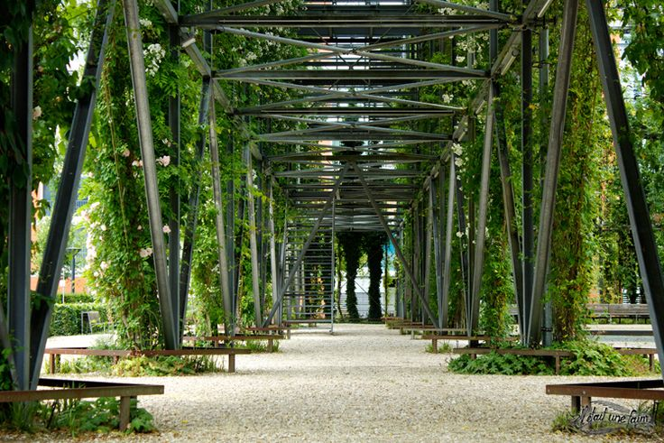 Voyage à Zurich : MFO Park une oasis verte en ville | Il Était une Faim - Blog voyage