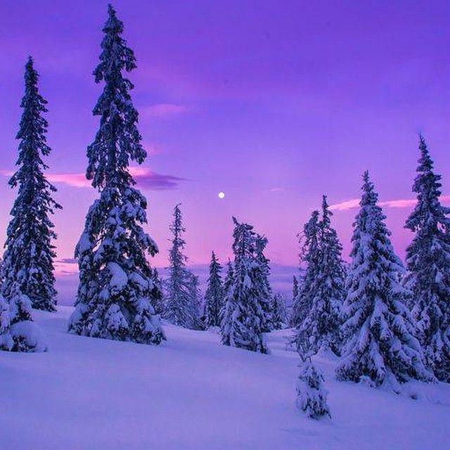 #Moonlight in #sunrise, #Norway #travel #traveleze #traveling #holiday #holidays