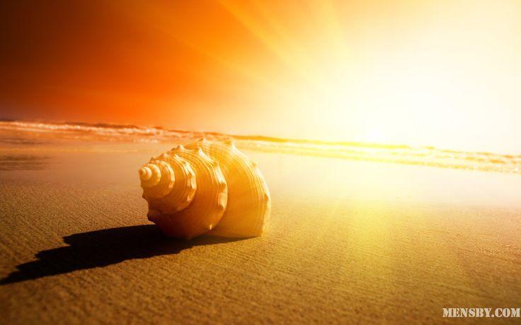 #живи #завтра #уйдешь #благодари   Живи каждый день так, будто завтра уйдешь, каждый миг жизни – благодари!  Владимир Леви