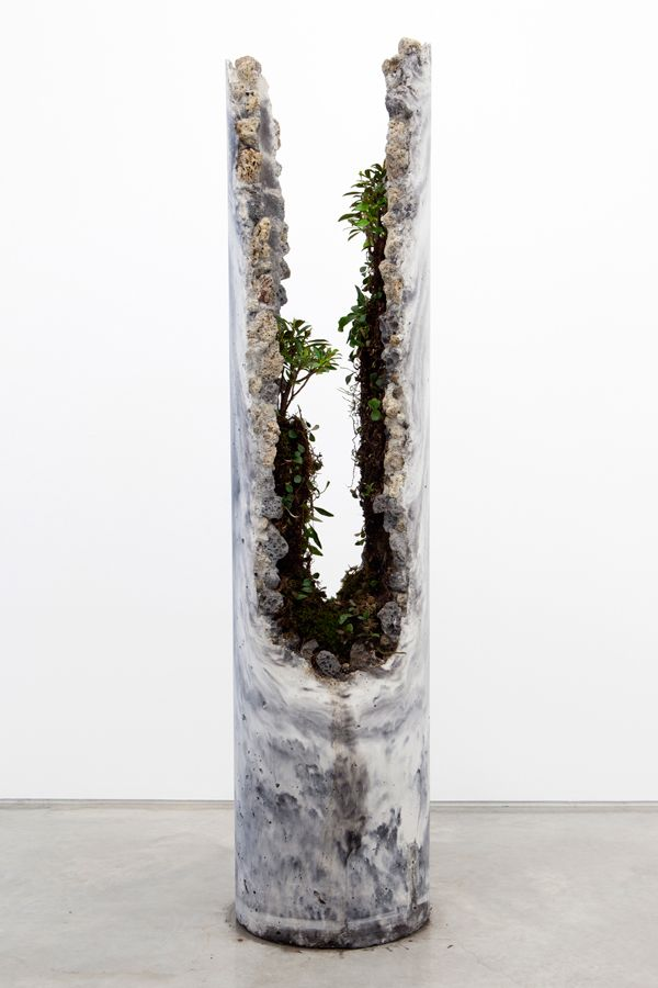 Solo Exhibition at Sarah Cottier Gallery, March 2013.innerouter consists of five concrete forms with a slag and ash aggregate, hosting lithophytic plant species native to Sydney.