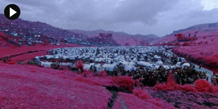 Watch an exclusive version (only available for TWO days) of Irish photojournalist and artist Richard Mosse's Congo film, The Enclave, now on show at the Vinyl Factory space. Using an extinct type of infrared military film it documents the war-ravaged Democratic Republic. Watch here: http://www.dazeddigital.com/artsandculture/article/19536/1/richard-mosse-the-enclave