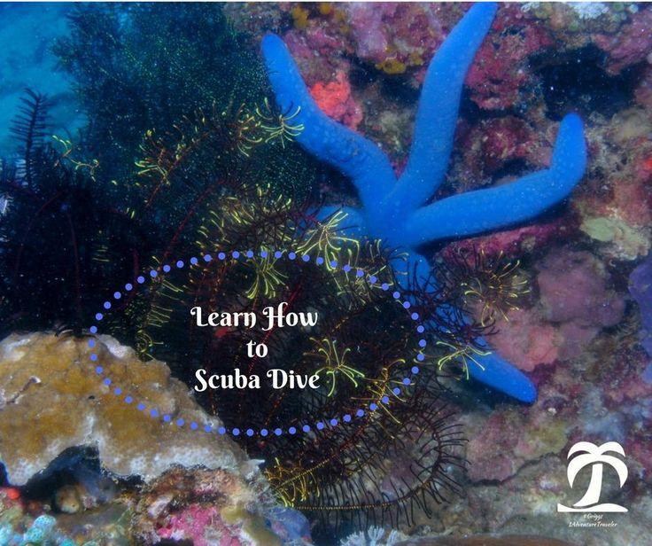 How to Scuba Dive for Adventure Travel - 1Adventure Traveler April 25, 2017 http://1adventuretraveler.com/learn-scuba-dive