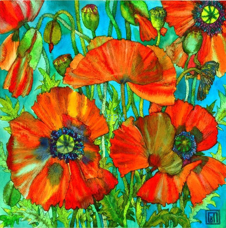 Red Poppies.           Sofia Perina Miller