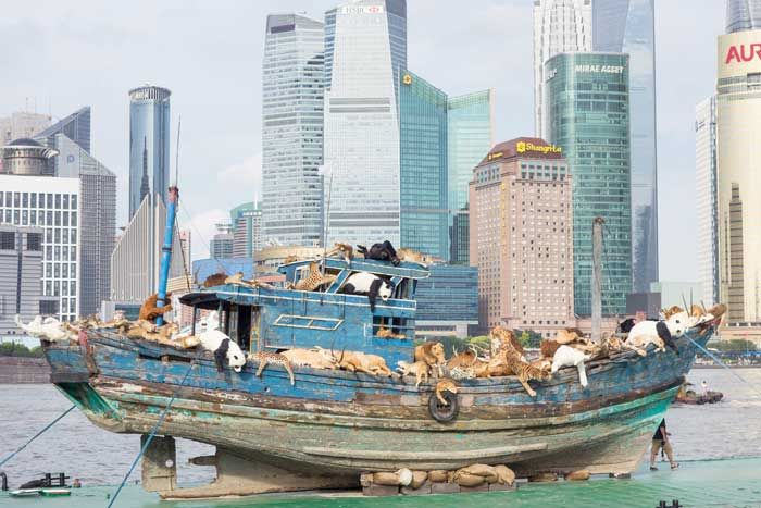 articles/Chinese artists ark of sick animals pulls into Shanghai
