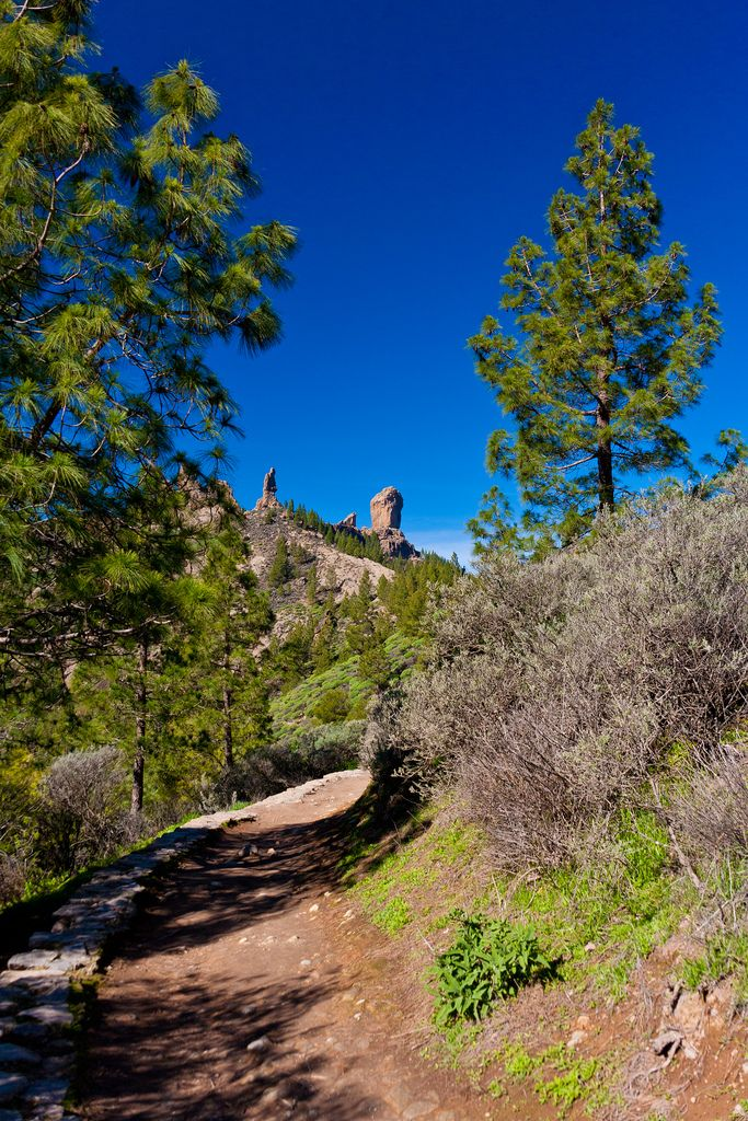 Roque Nublo - Gran Canaria, Spain http://www.travelandtransitions.com/destinations/destination-advice/europe/outdoor-adventure-gran-canaria/