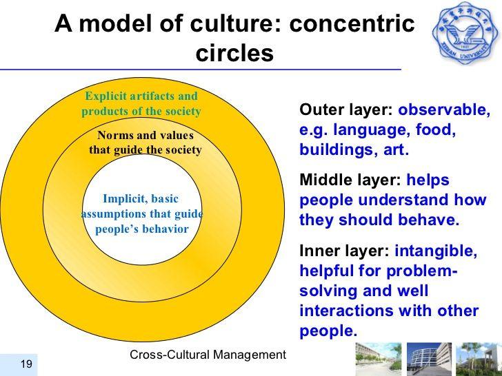 Cross Cultural Management- Dancom Case Study