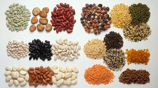 Universo dos Alimentos²: Fontes de Proteina Vegetal
