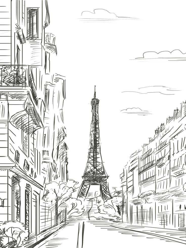 Paris Line Art Printed Photography Backdrop / 7410 – Lolly