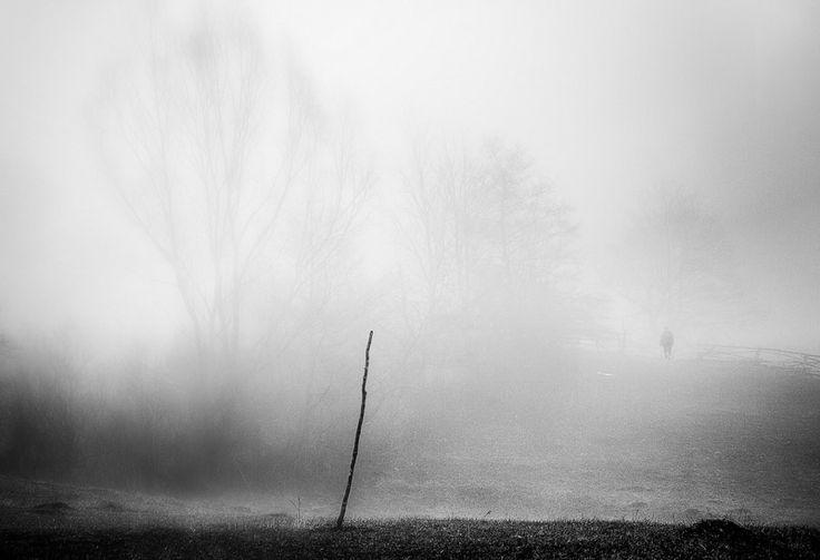 All Alone by Serban Bogdan on Art Limited
