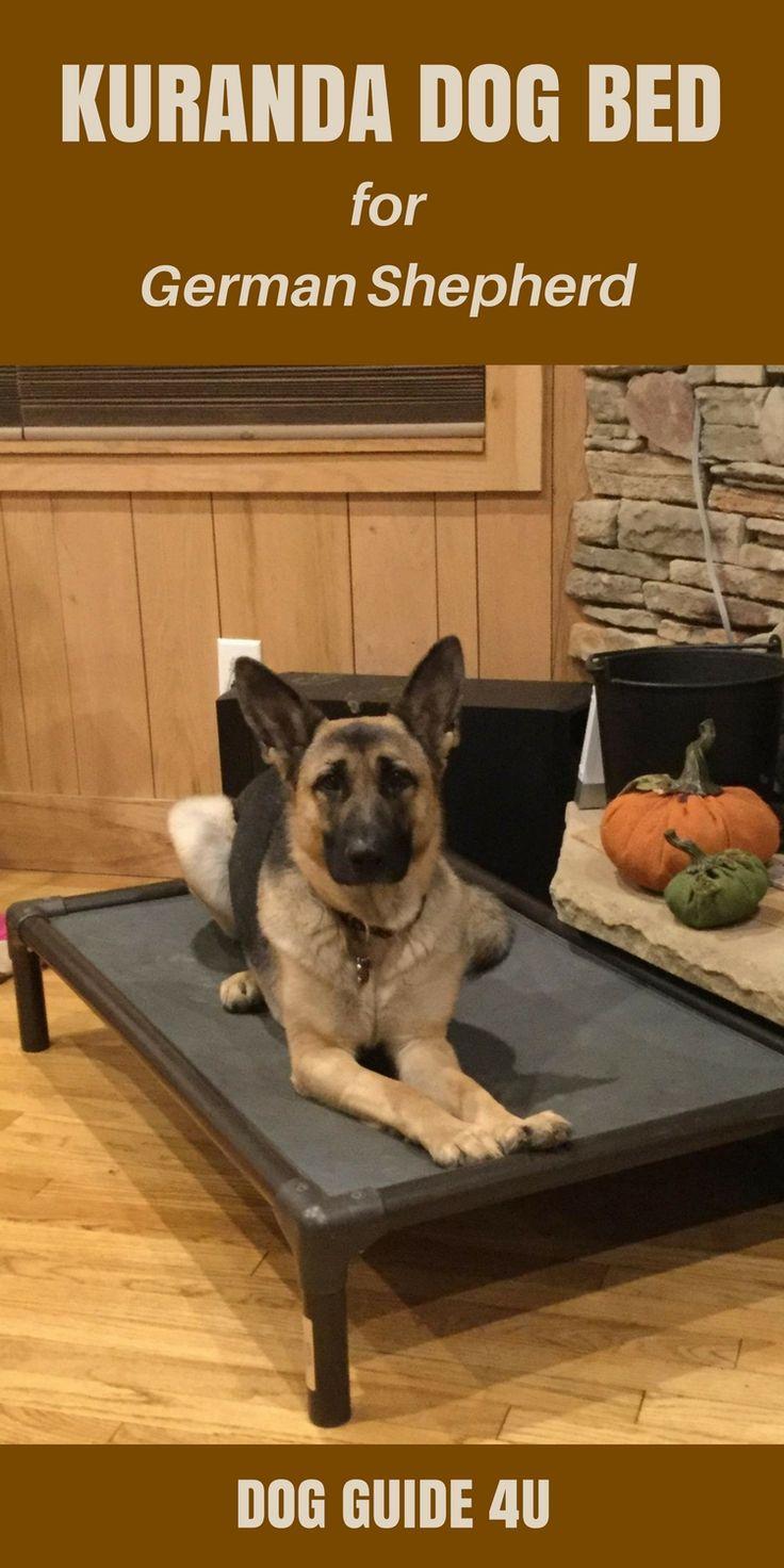 Kuranda Dog Bed #dogguide4u #dogbed #dogbedforgermanshepherd #germanshepherd