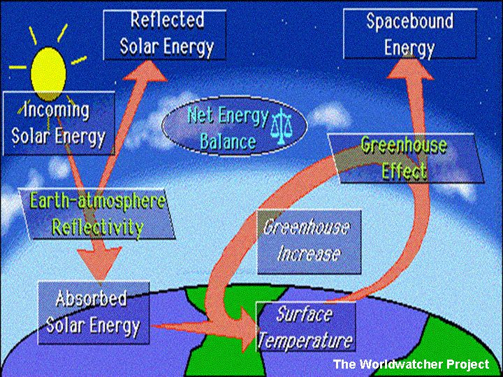 an introduction to the issue of the greenhouse effect We've known about the greenhouse effect since the 1800s how climate change affects hurricanes and other tropical cyclones is less certain.
